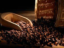 Jak správně nakupovat a uchovávat kávu, aby neztratila na čerstvosti