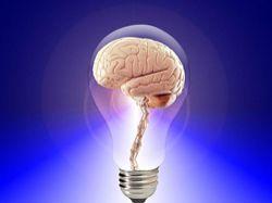 Zefektivn�te proces u�en� a tr�nujte svoji pam�