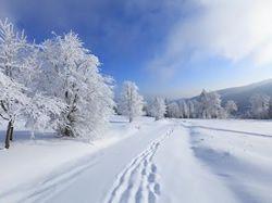 Milujete lyžování? Stále není pozdě vyrazit!