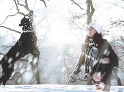 Jak v chladném počasí správně pečovat o pejska